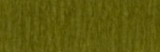 Paquet papier crépon vert mousse
